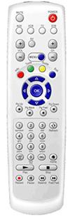 amino remote.JPG