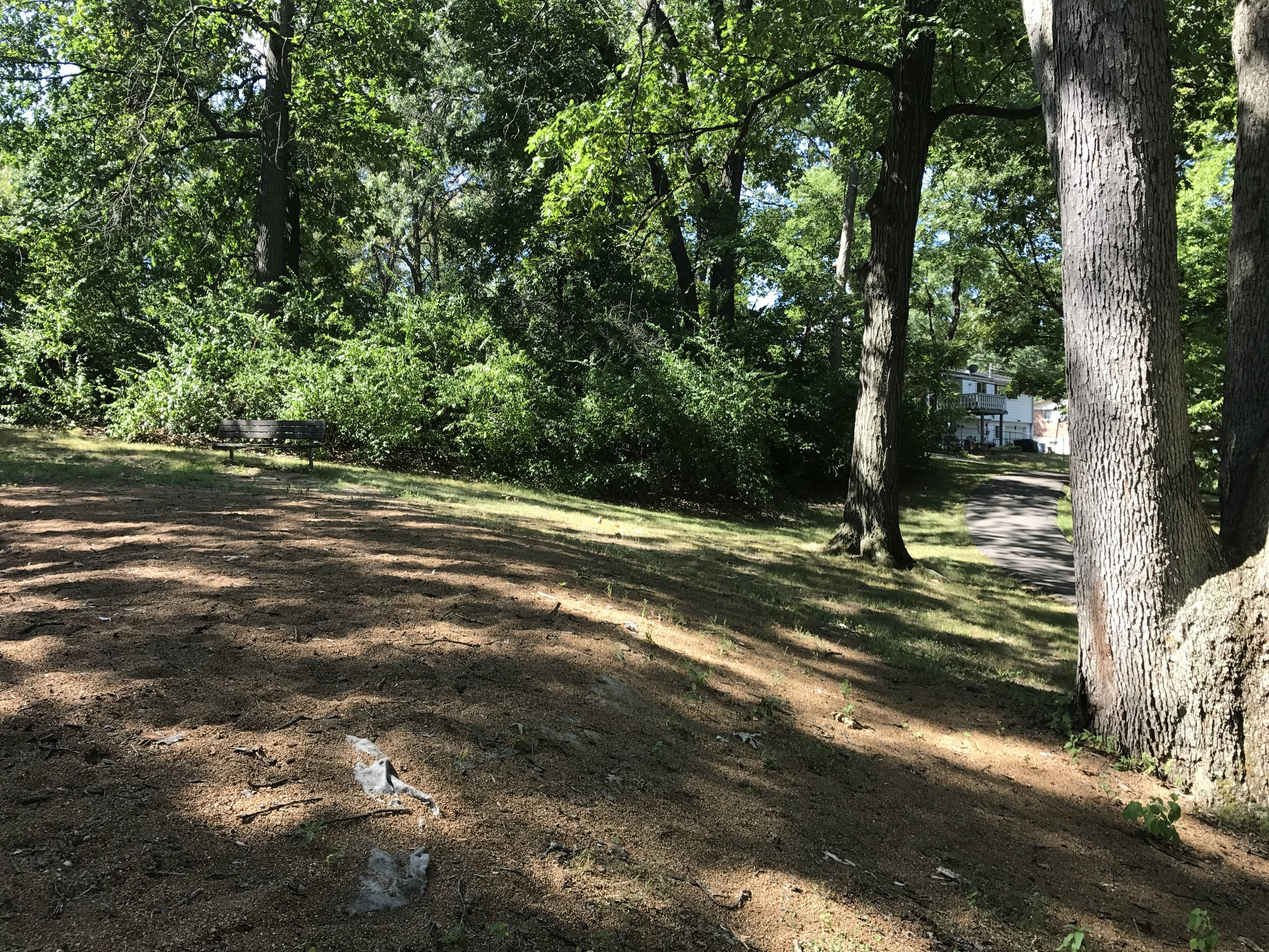 Before: Rayburn Park