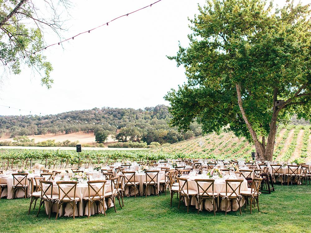 Vineyard reception, Paso Robles Wedding
