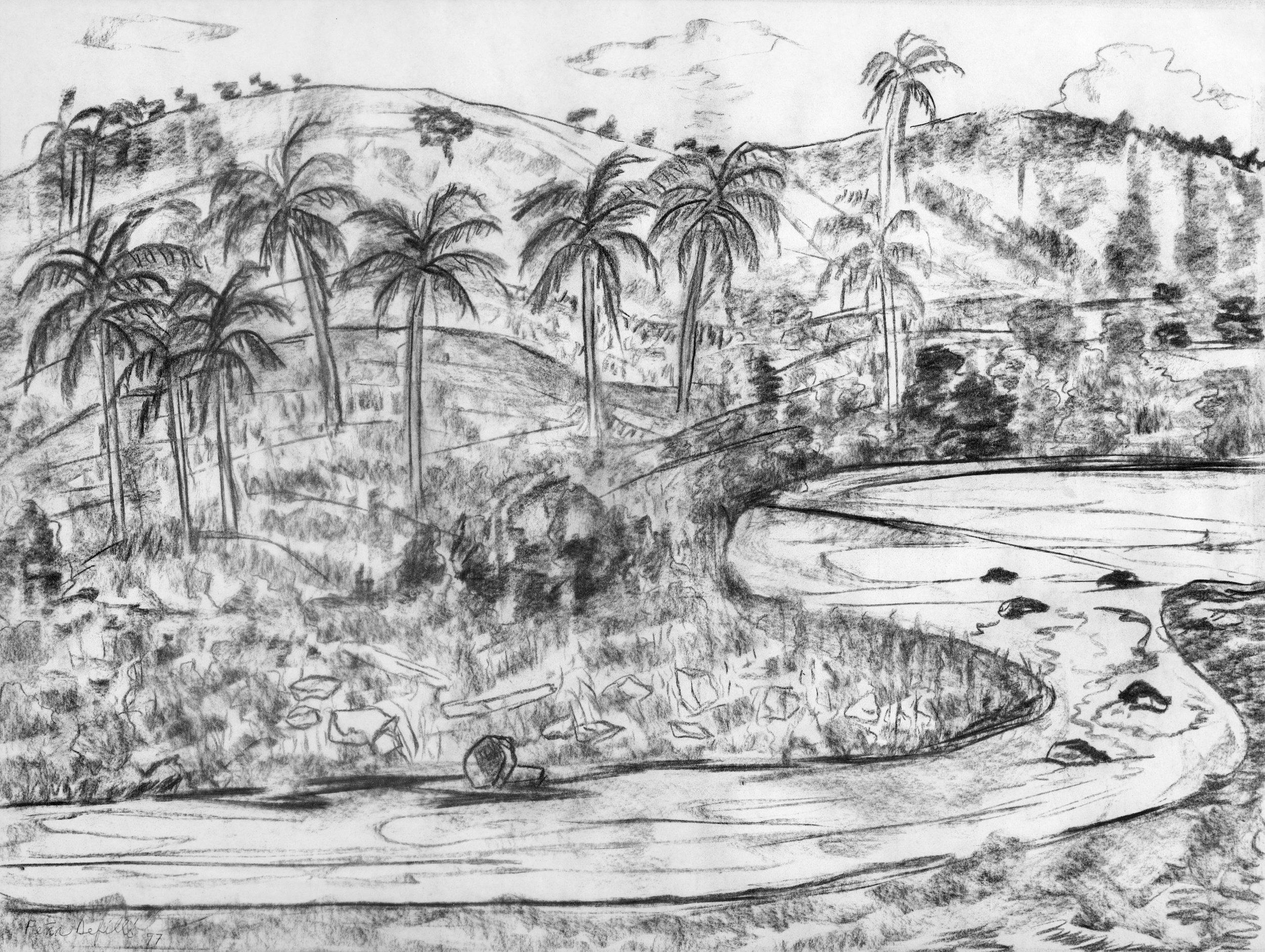 Río Jimenoa (1997) I Carboncillo sobre papel