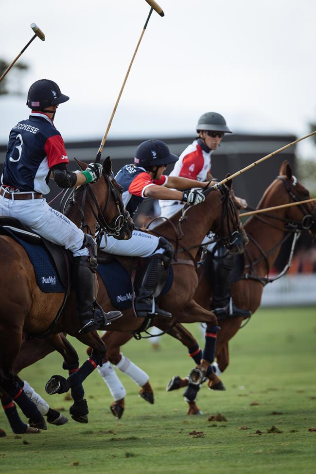 IN London - Polo Reinvented
