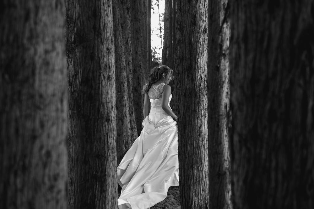 679-Byron-Bay-Wedding-Photographer-Carly-Tia-Photography.jpg