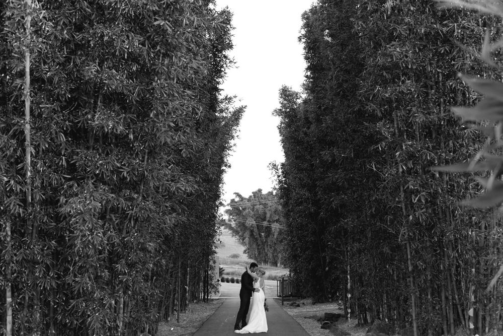 190-Byron-Bay-Wedding-Photographer-Carly-Tia-Photography.jpg