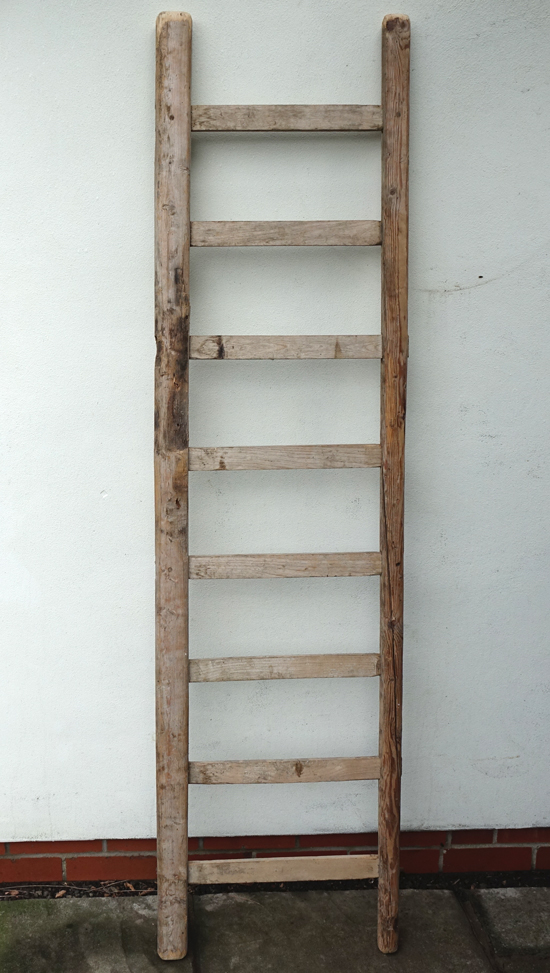 French Flat Tread Ladder £15