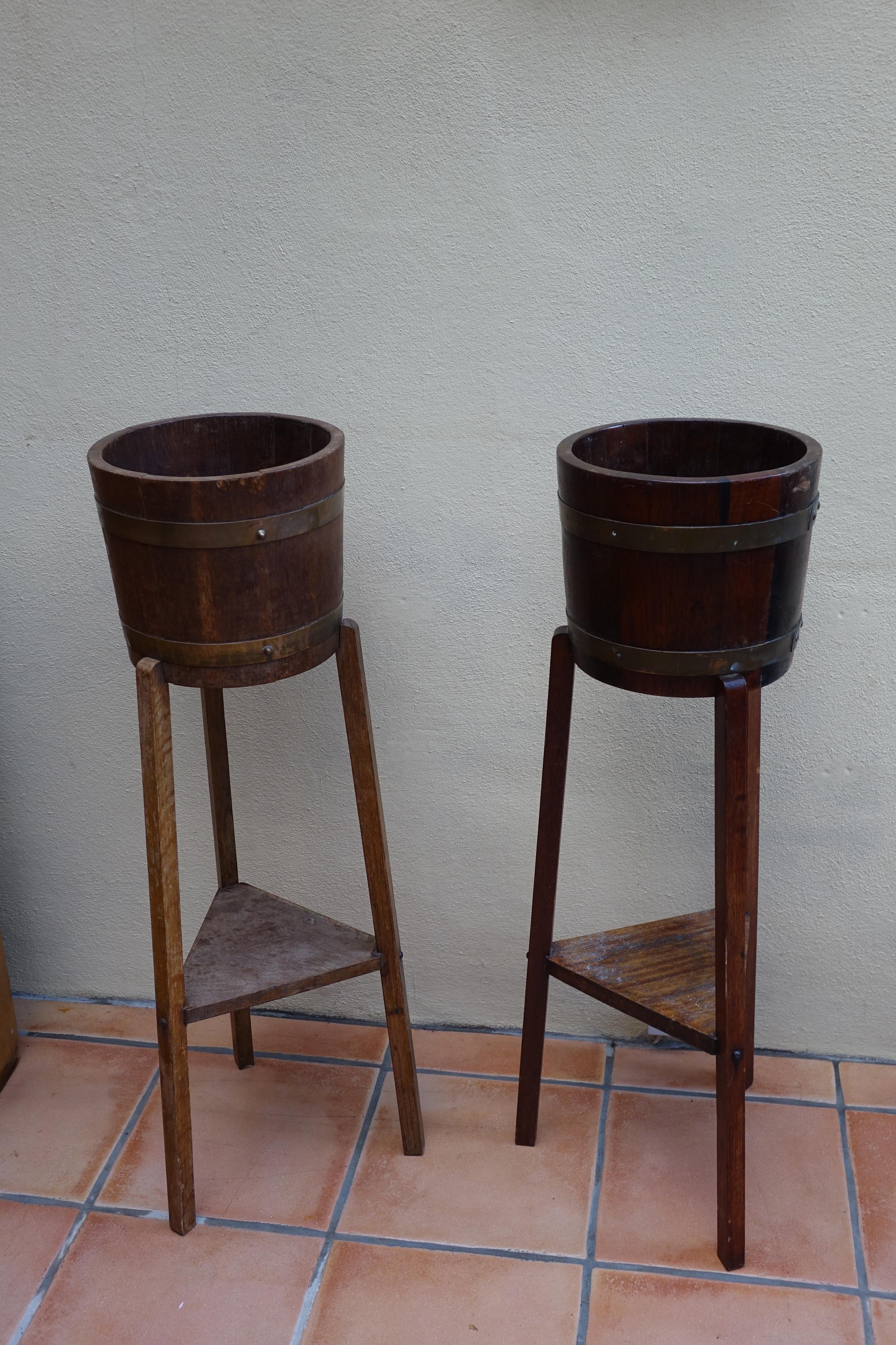 Pair bucket display - £8 each