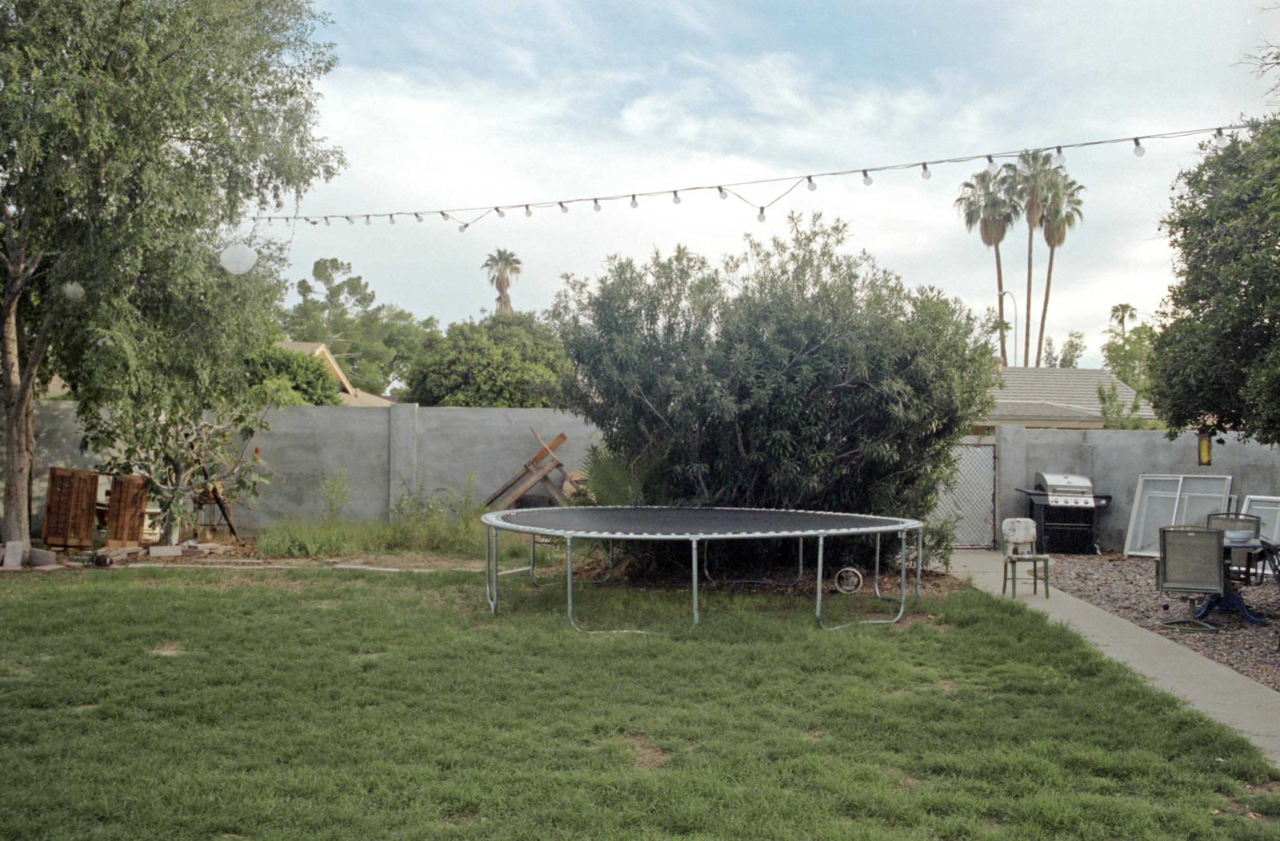 trampoline print 2new.jpg