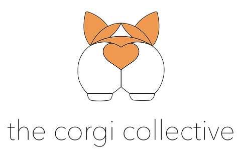 corgi_collective_large.png