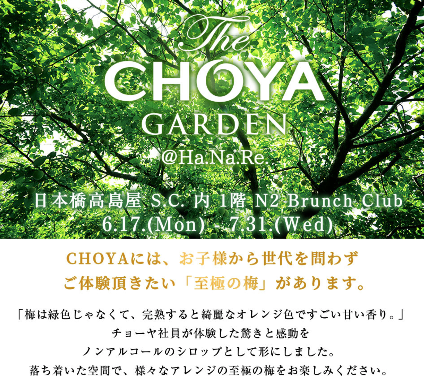 20190617 Choya.png