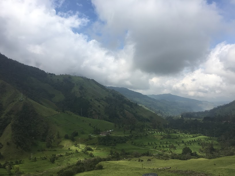 We will be here together! Valle Cocora, salento.