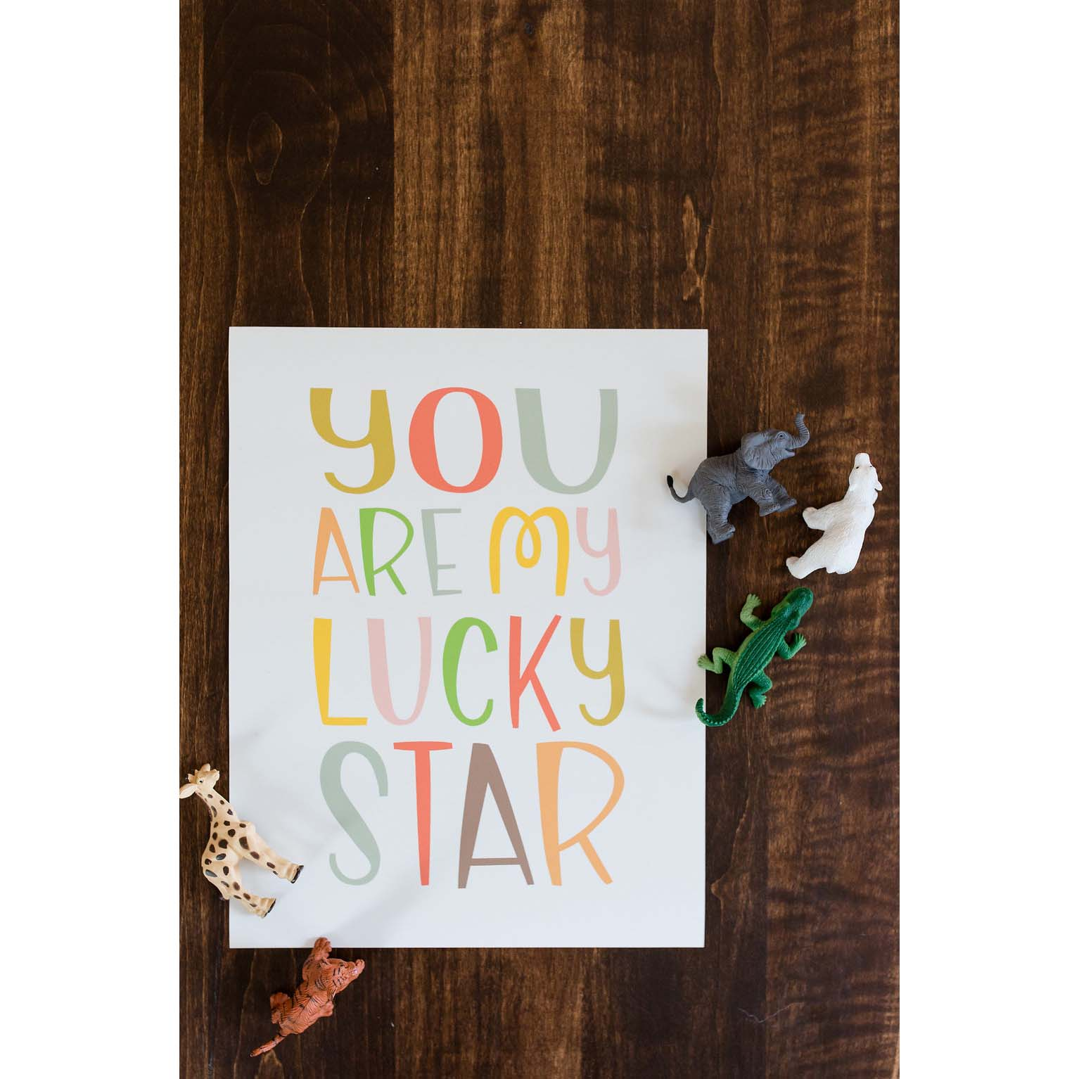 """Lucky Star""  Danielle Hulsey Photography"