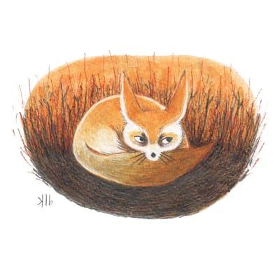 09-16-fennec-fox-rgb-small.jpg