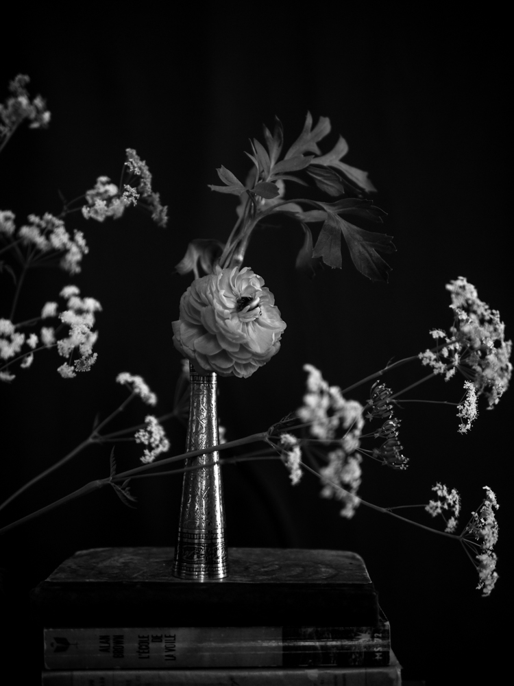170611_flowers-24.jpg