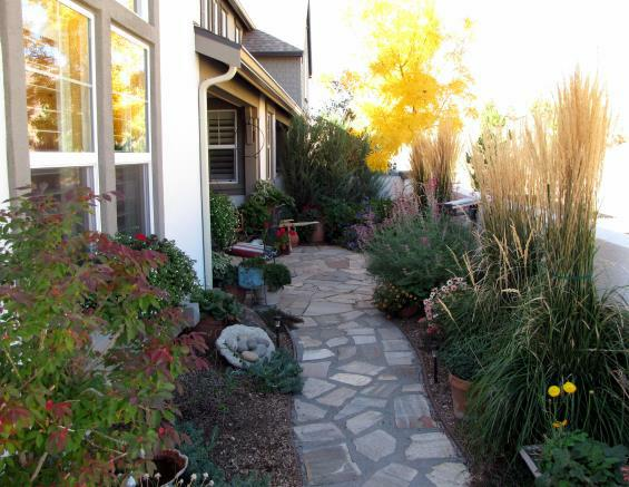 A small courtyard full of color and four seasons of interest.