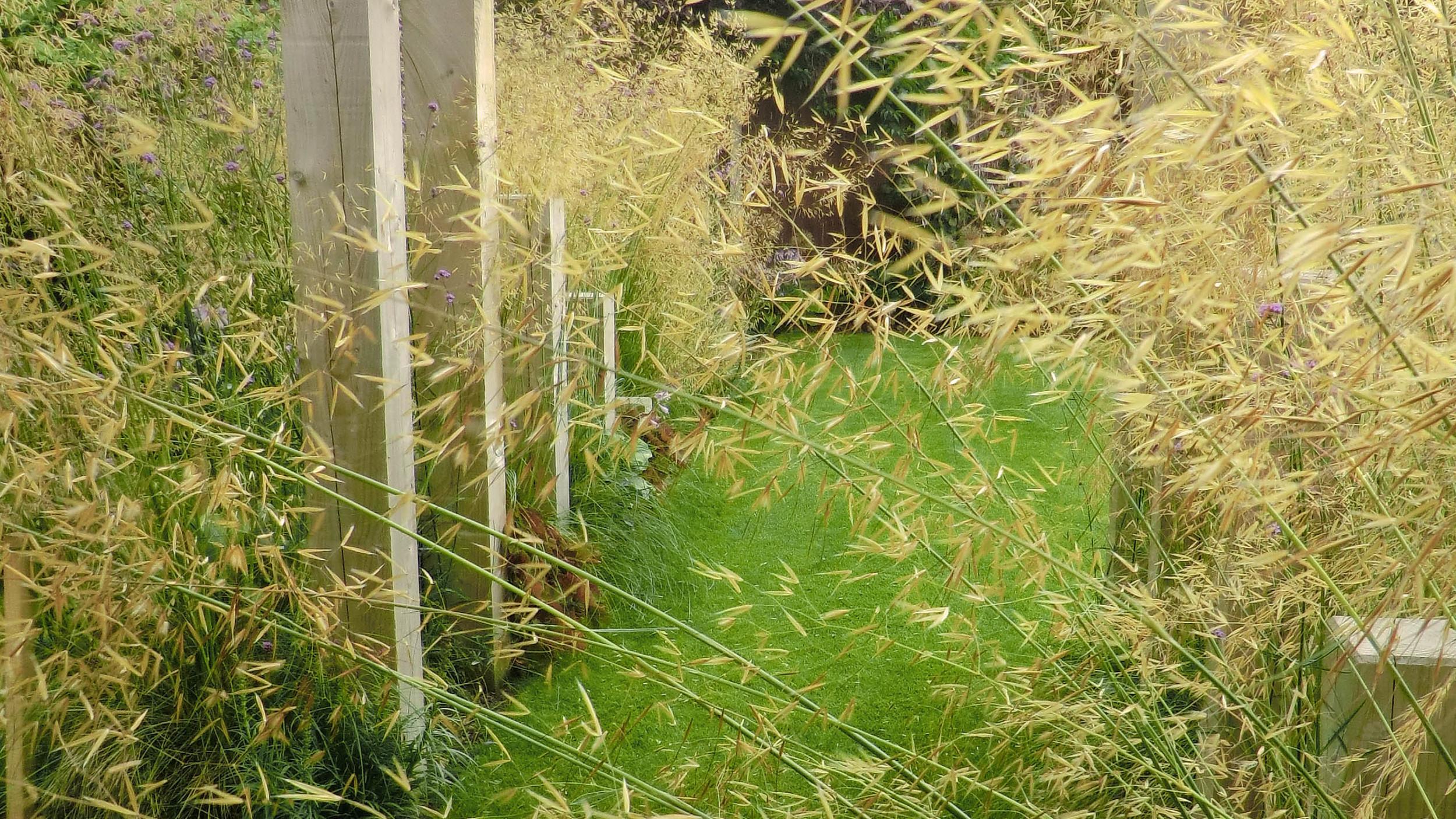 GardenDesignCheshire (38).jpg