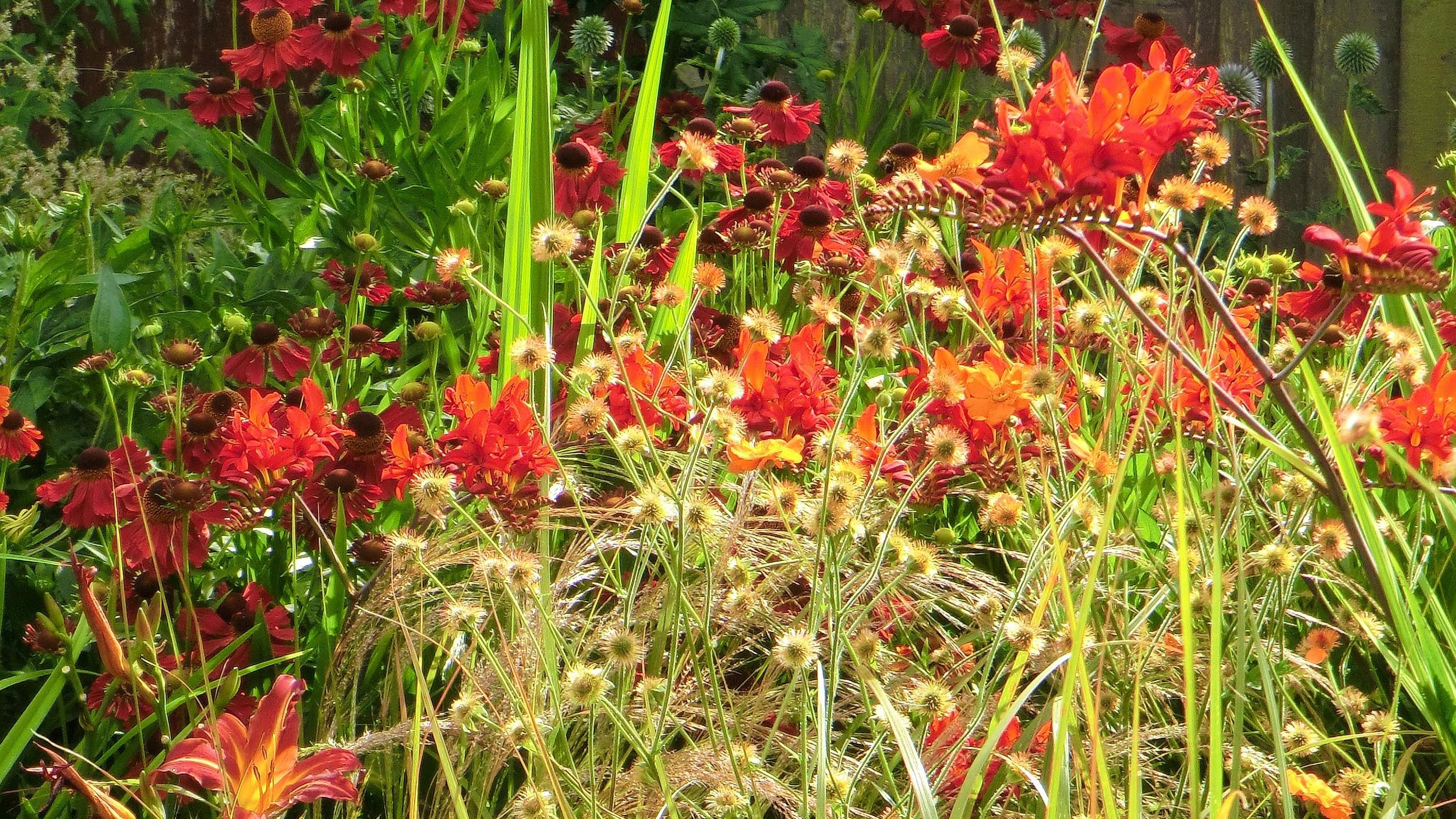 GardenDesignCheshire (40).jpg