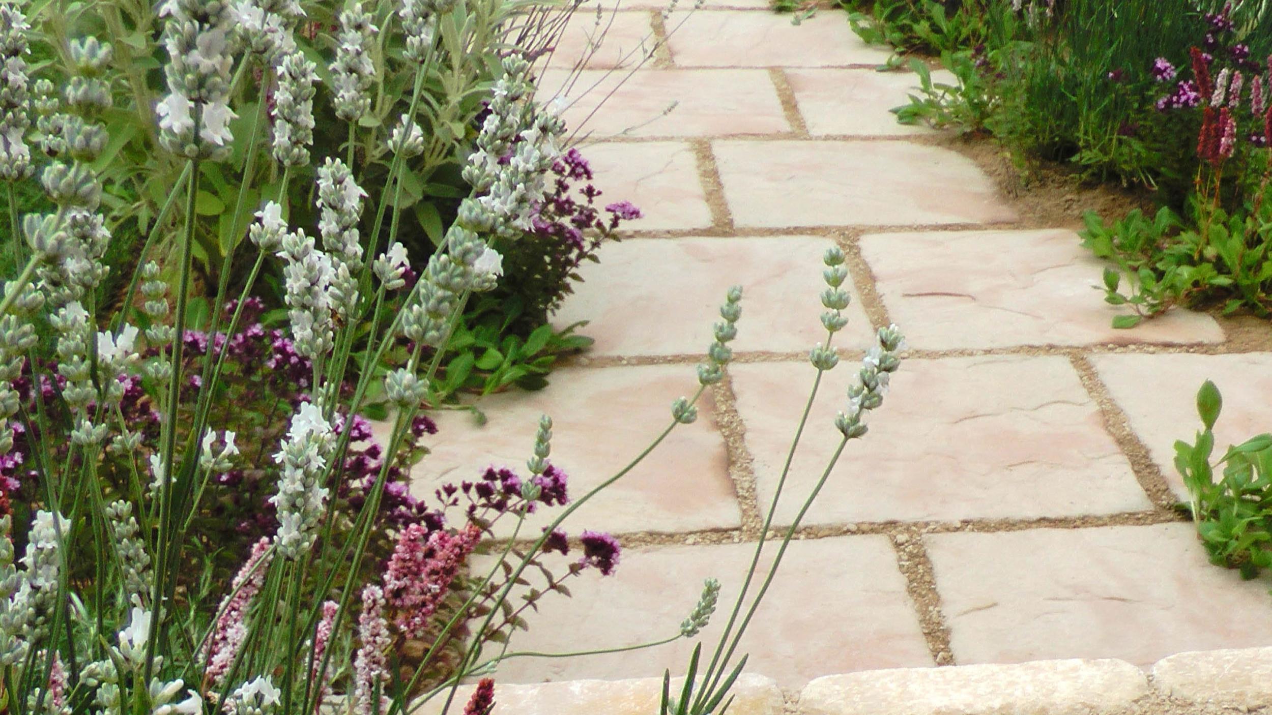 Cheshire Garden Design: RHS Tatton Flower Show 'Precious Resources Garden': Path with perennial planting