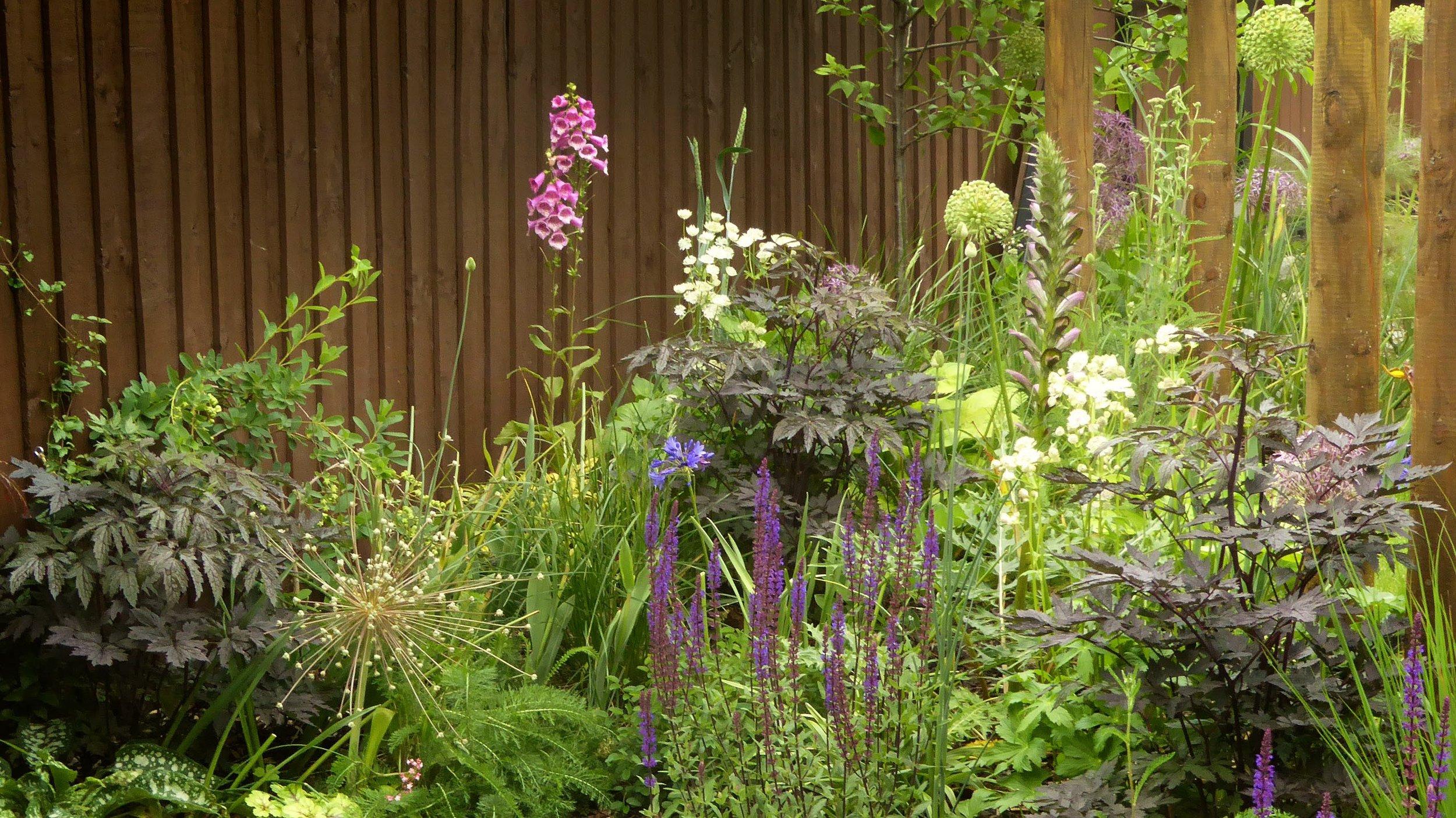 gardendesignbillinge (3).jpg