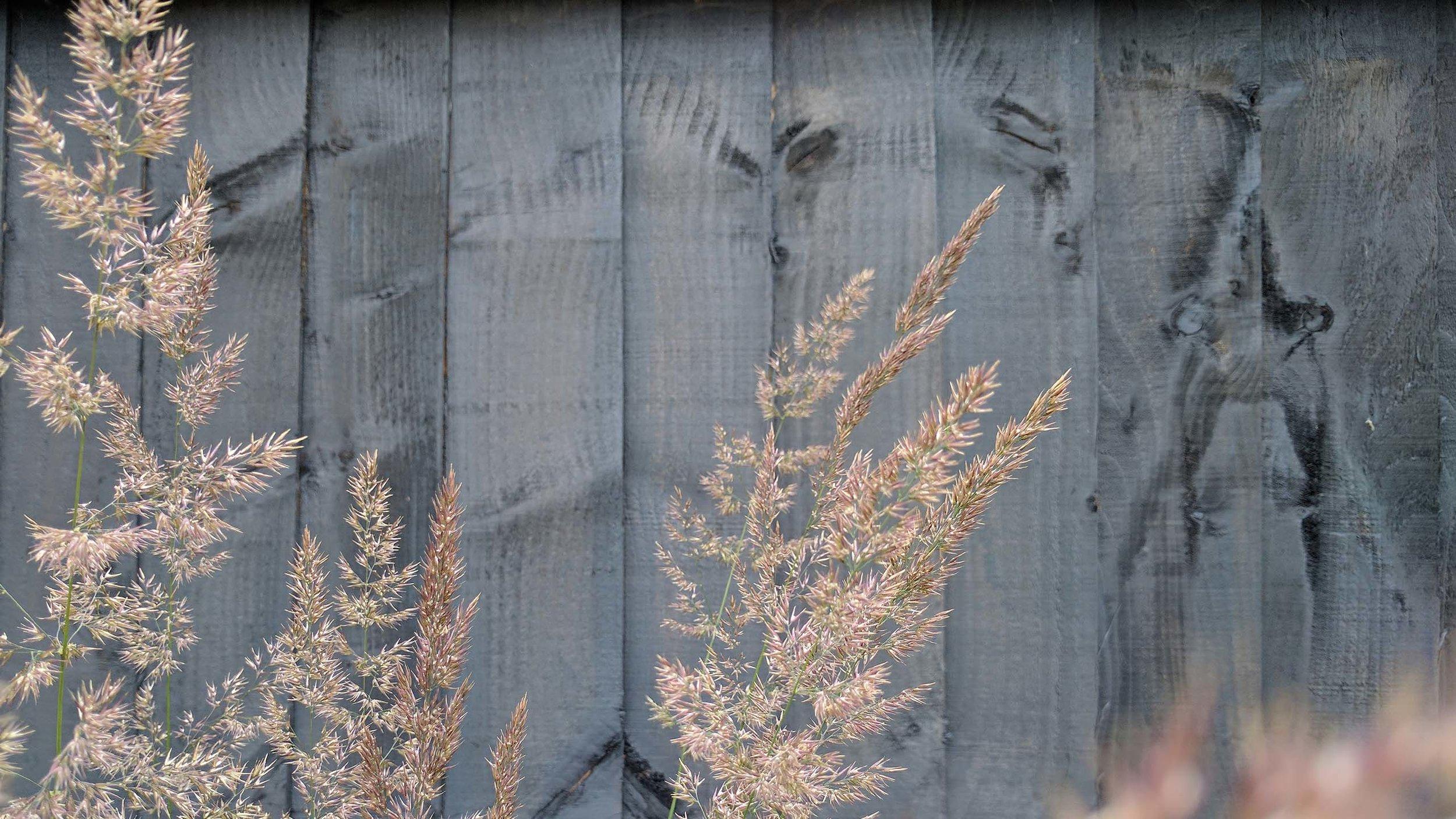 GardenDesignLancaster 3.jpg