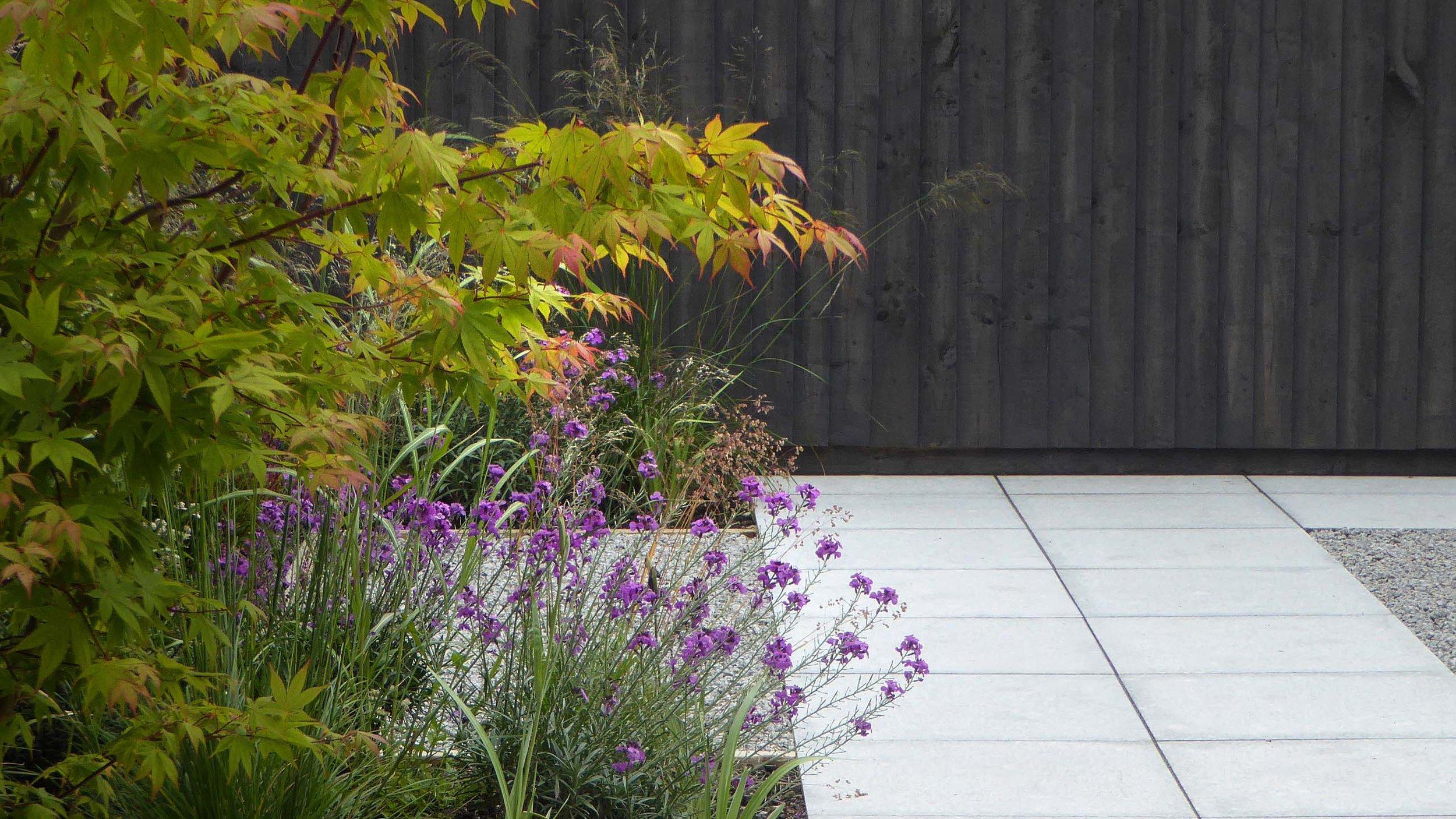 GardenDesignLancaster 8.jpg