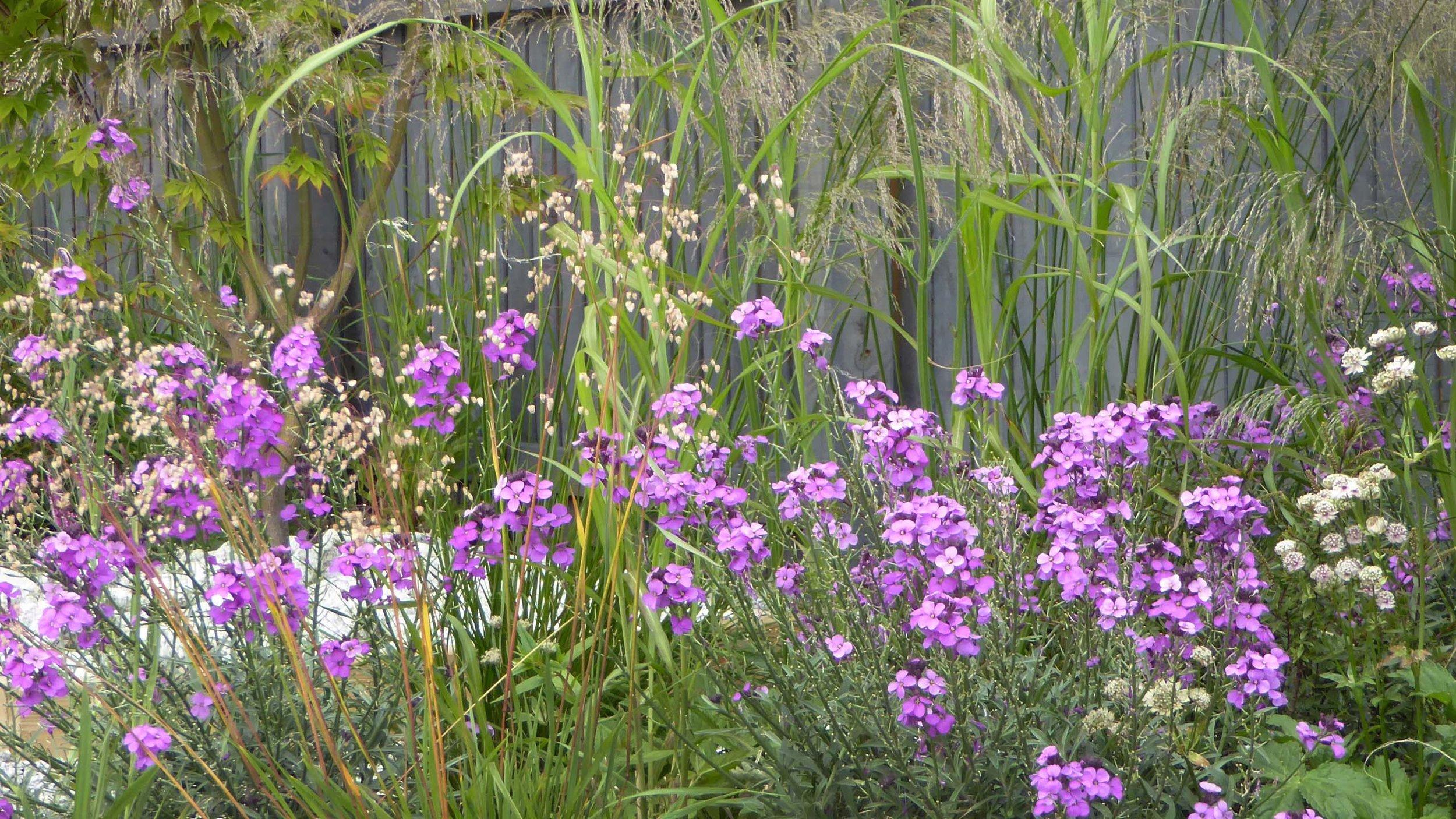 GardenDesignLancaster 11.jpg