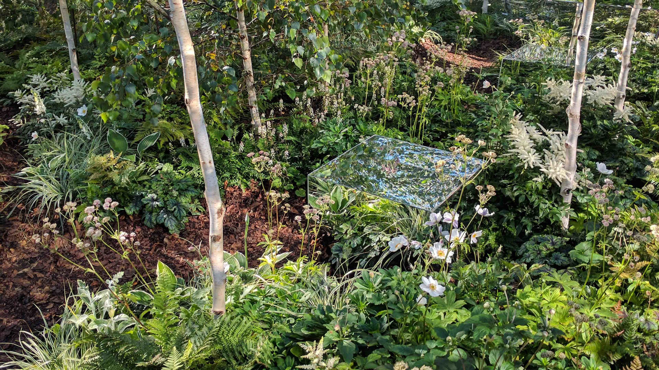 Southport Garden Design: Kuro: Inside The Mirrored Cube