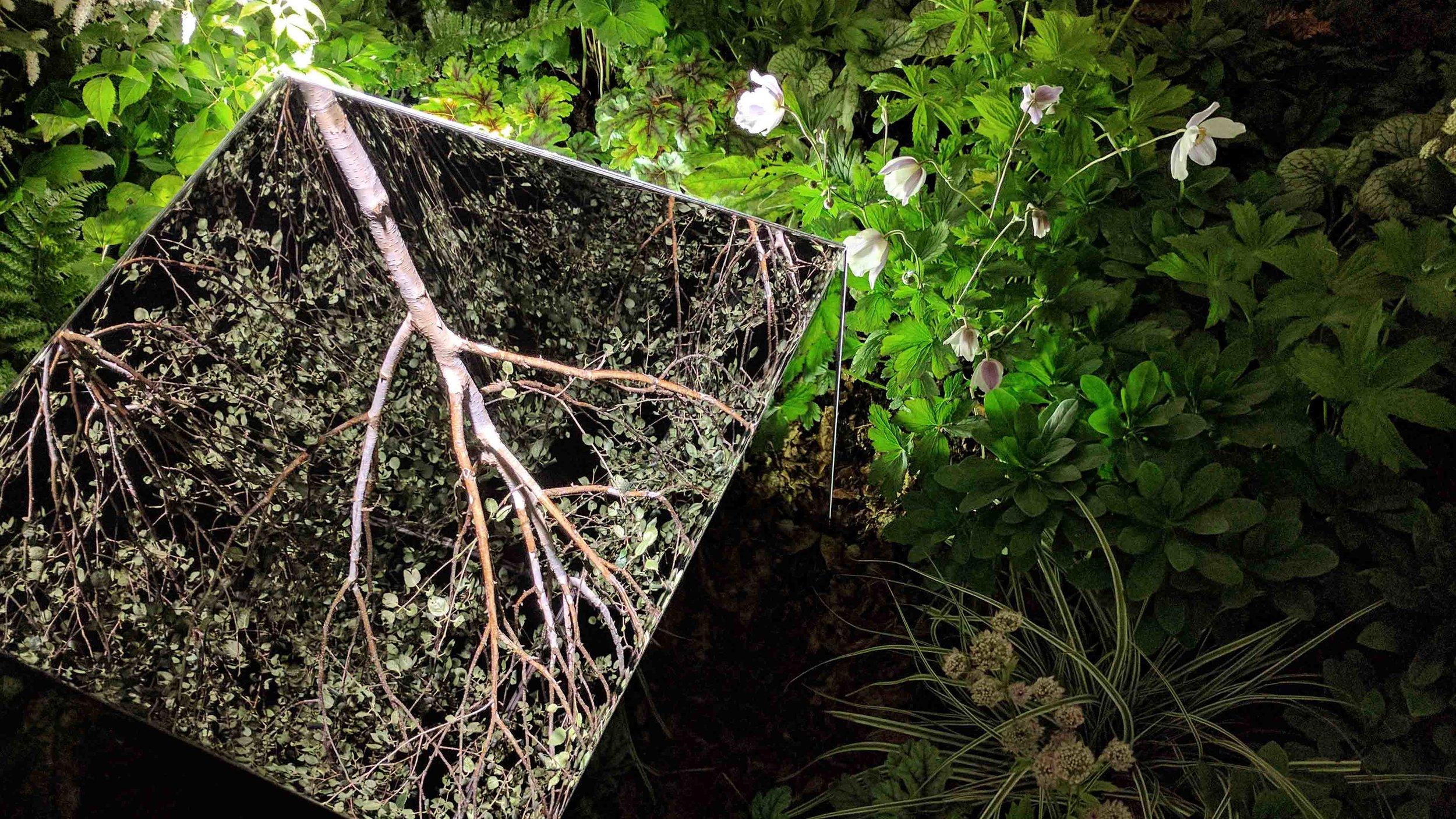 Southport Garden Design: Kuro: Inside The Mirrored Cube At Night