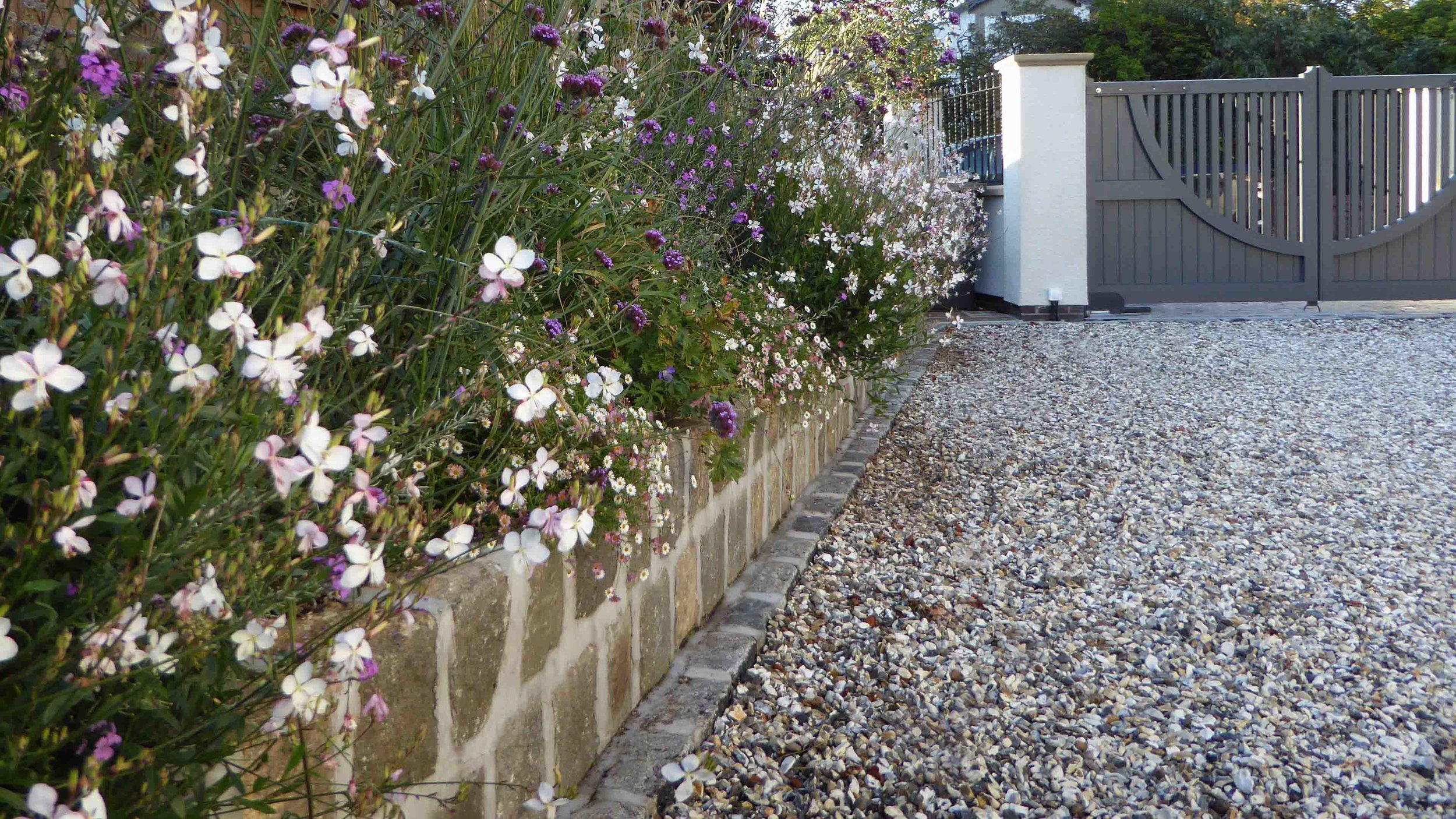 Cheshire Garden Design: The Sun and Shade Garden: Gaura In Raised Bed Next To Drive
