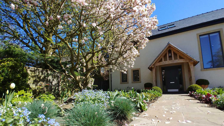 Cheshire Garden Design: The Sun And Shade Garden: Magnolia In Bloom