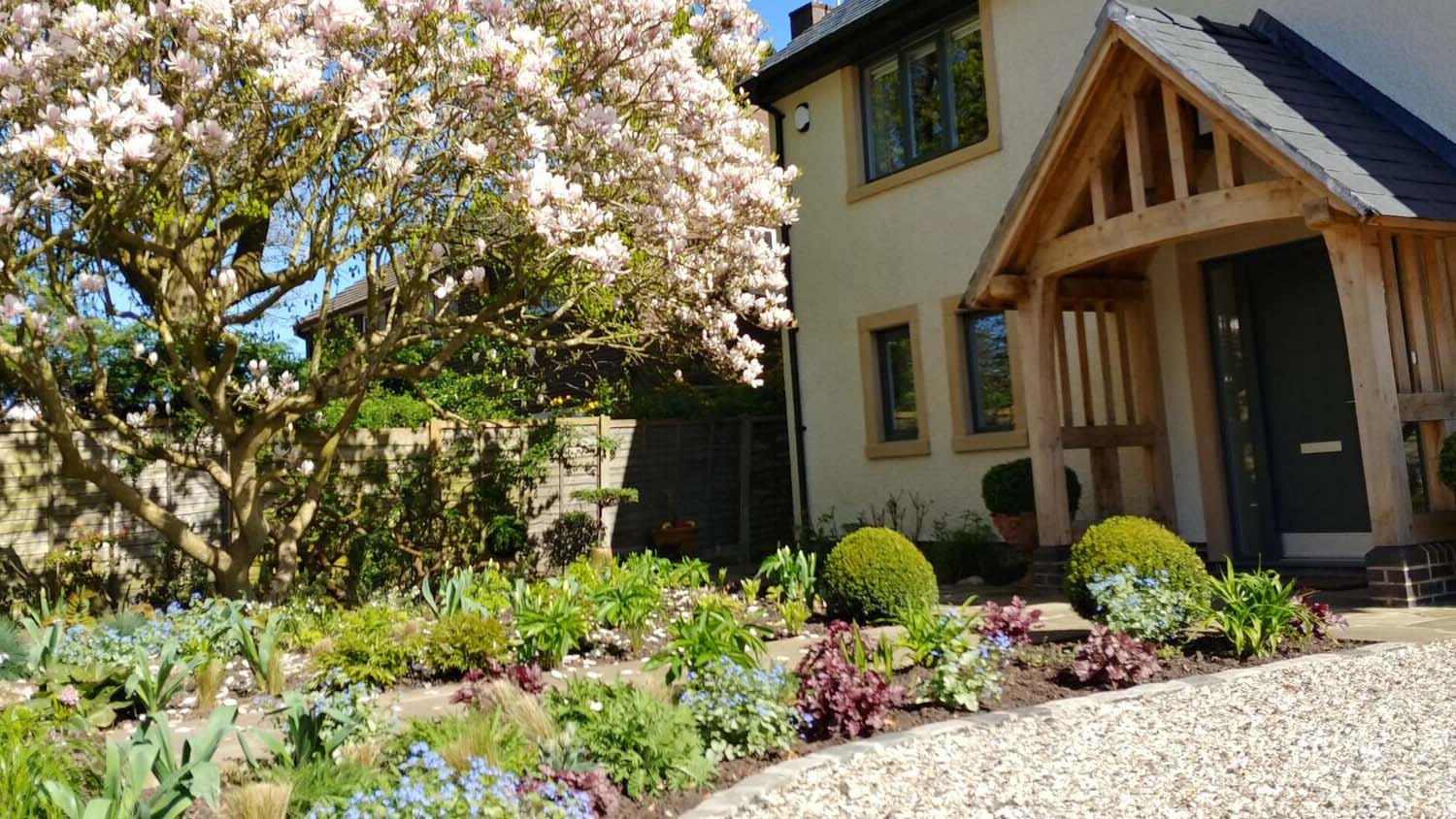 Cheshire Garden Design: The Sun And Shade Garden: House With Magnolia In Full Bloom