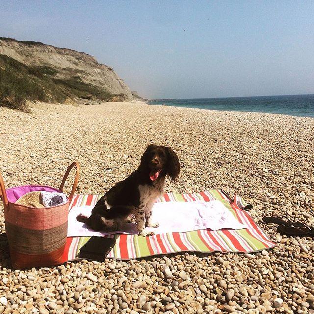 Lazy days #littleboutiqueclub #beachlife #jurrasiccoast