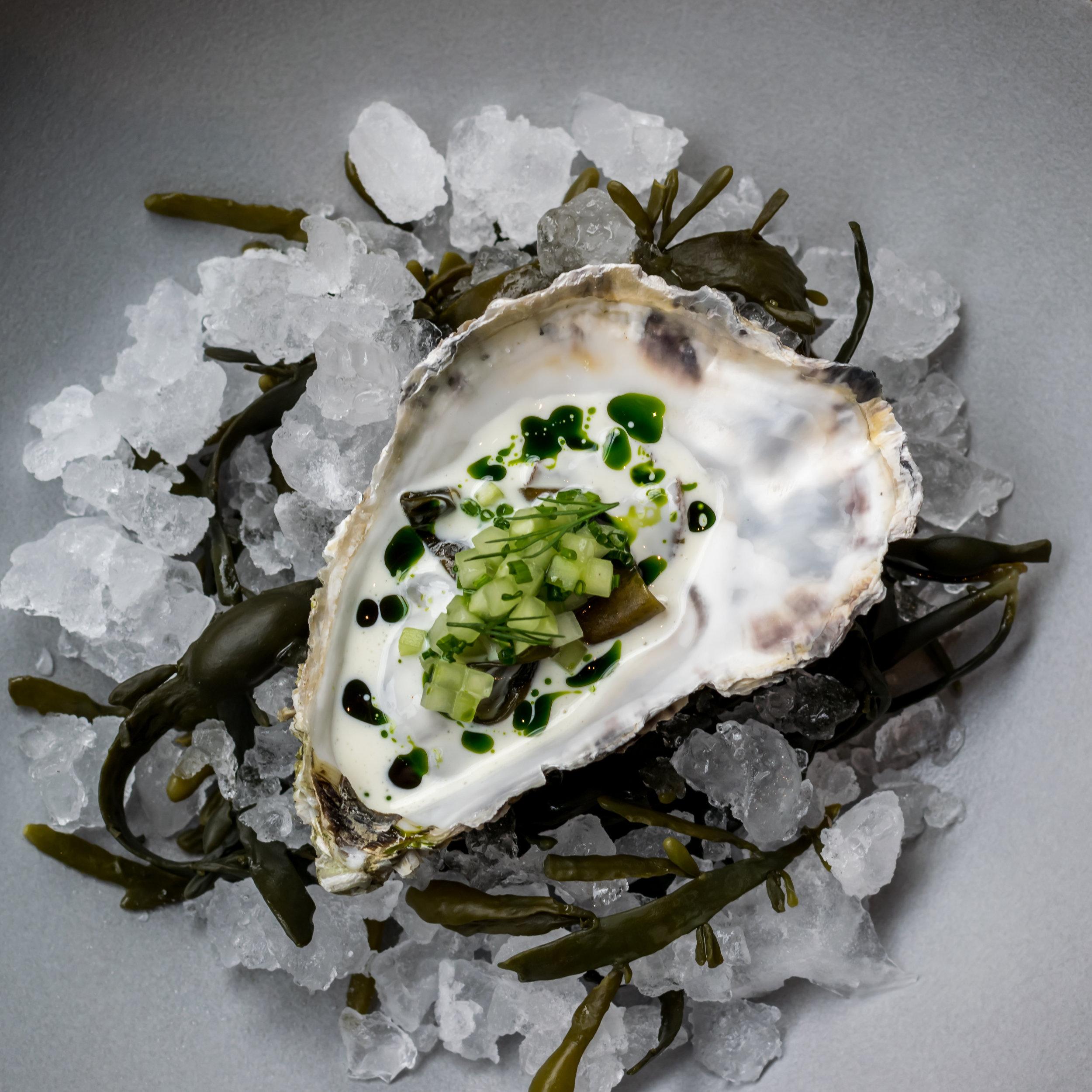 Oyster-cucumber-seaweed-cream3.jpg
