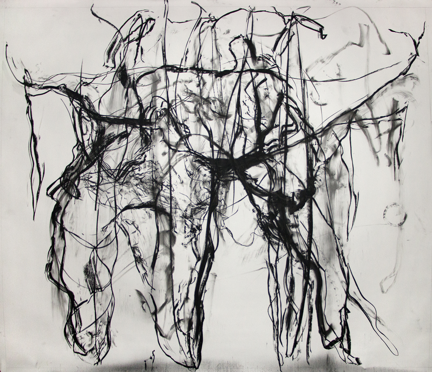 Birdeater, 2016, Charcoal on paper, 96 x 120 in.