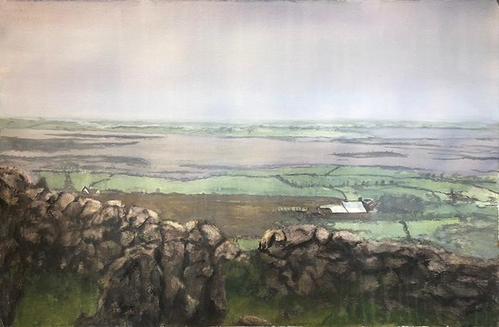 The Irish Burrin