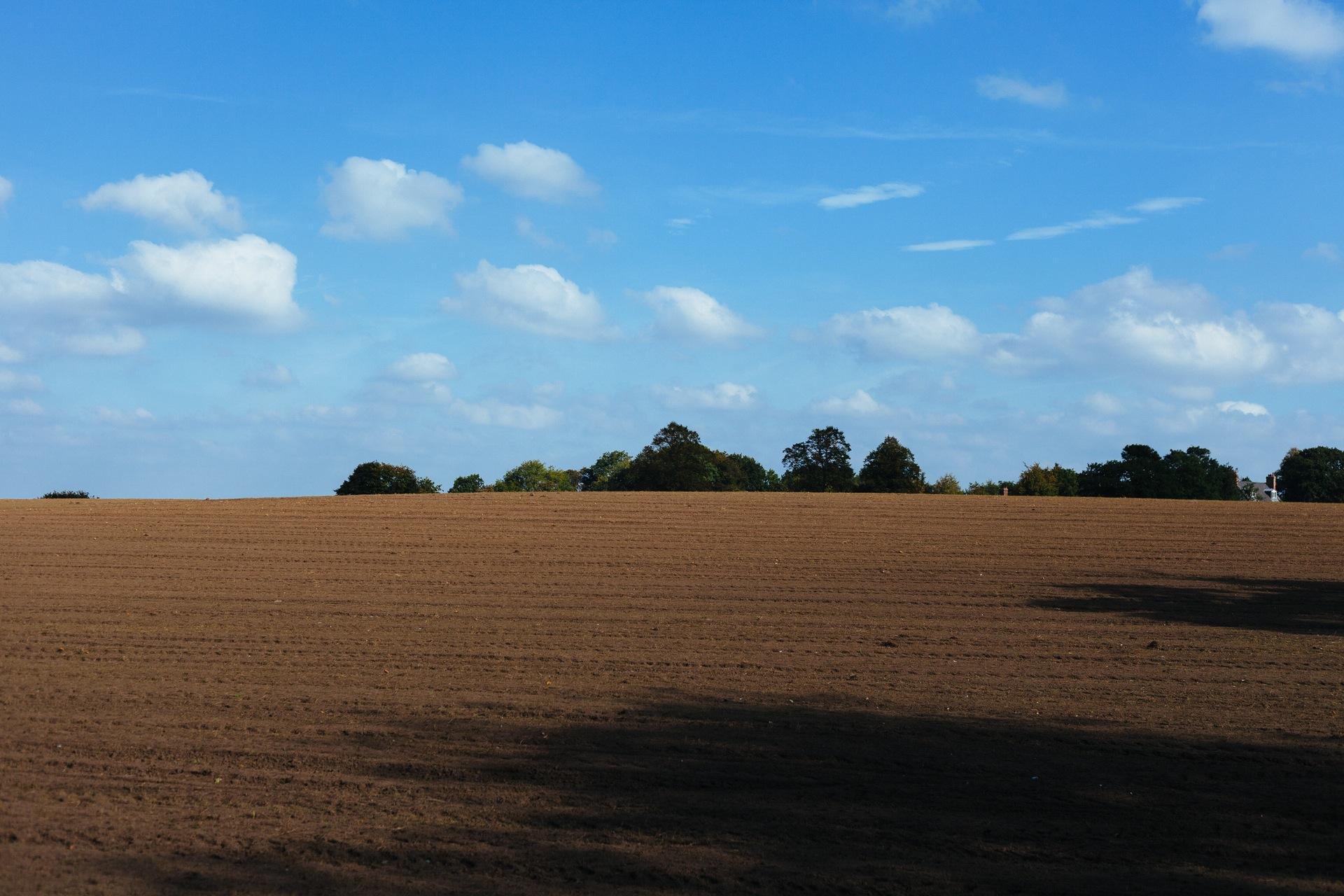 field-agriculture-soil.jpg