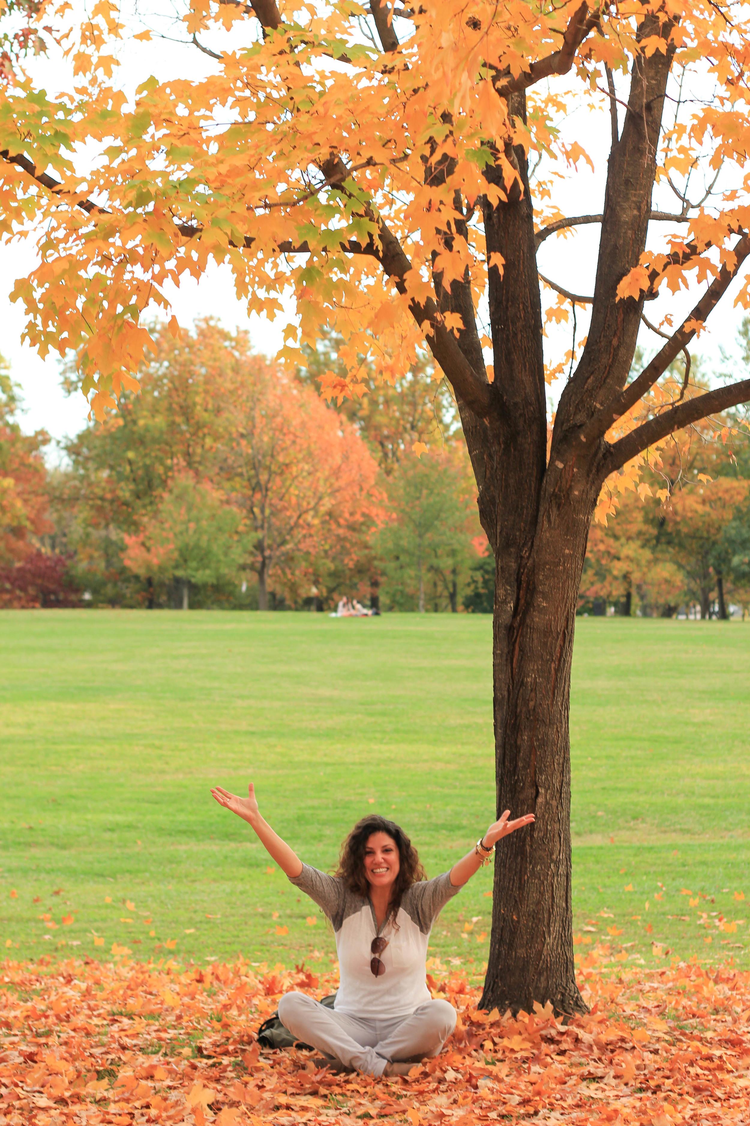 Fall in DC24.jpg