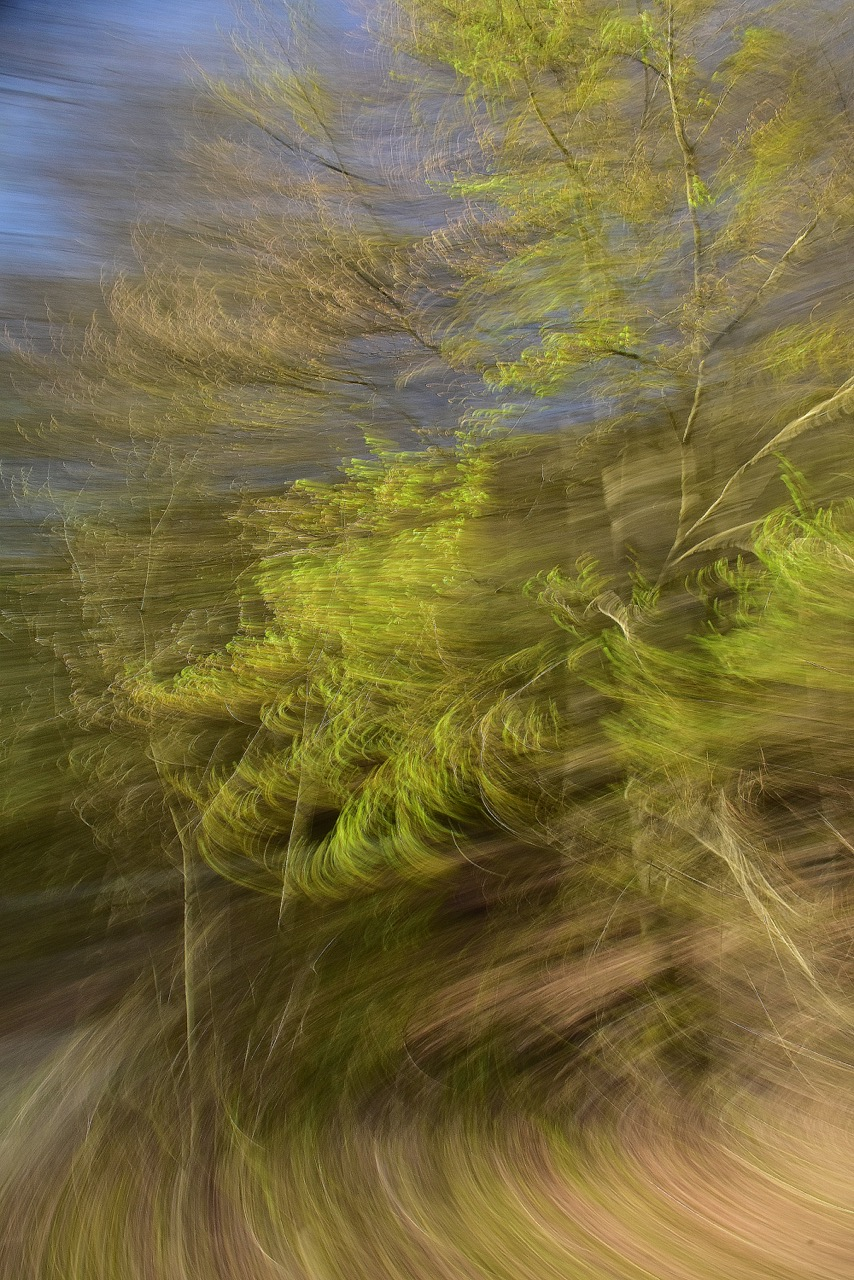 Ausstellungsimpressionen | Bild: Alfred Borer