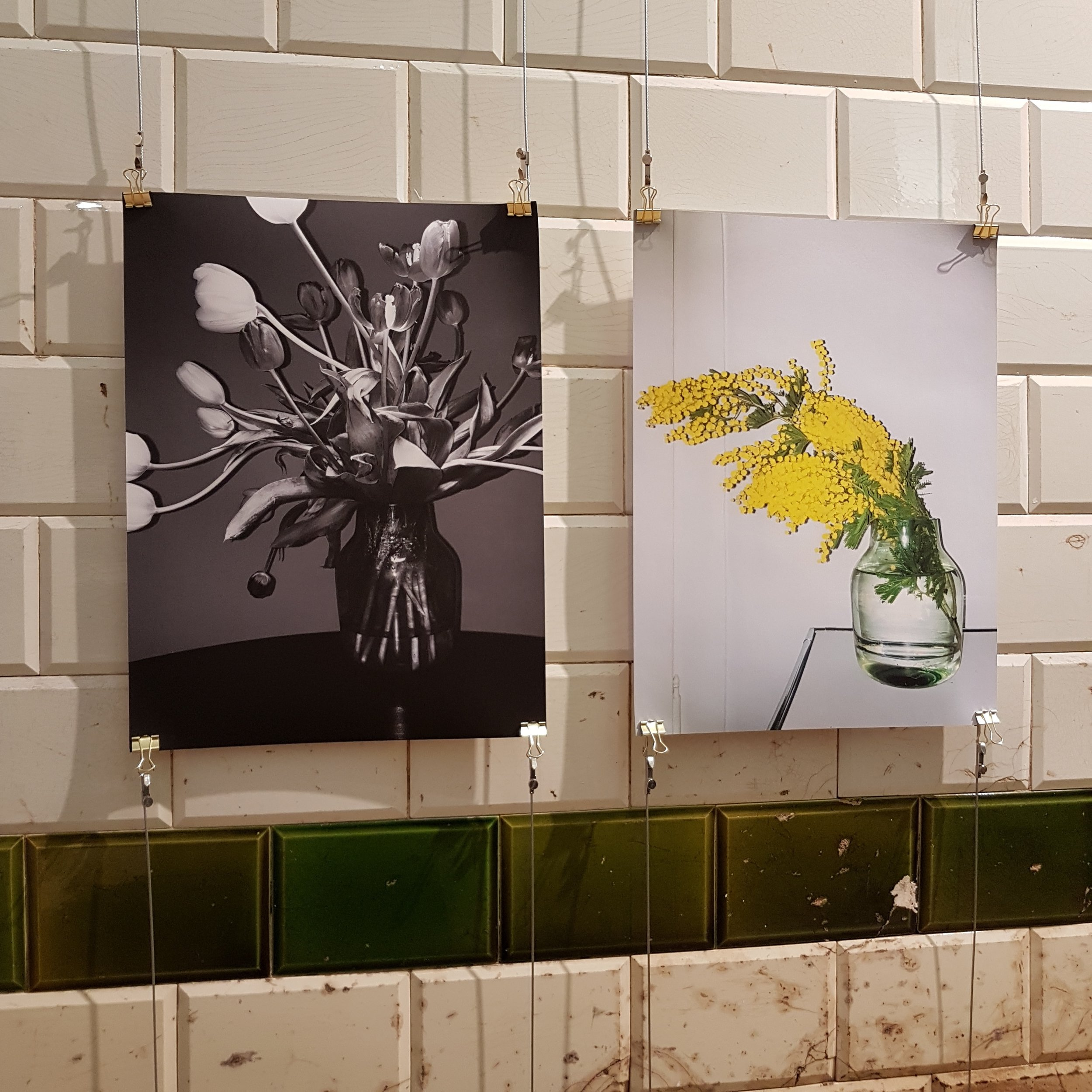 """flashtulips"" und ""mimosa"" | Désirée Good"