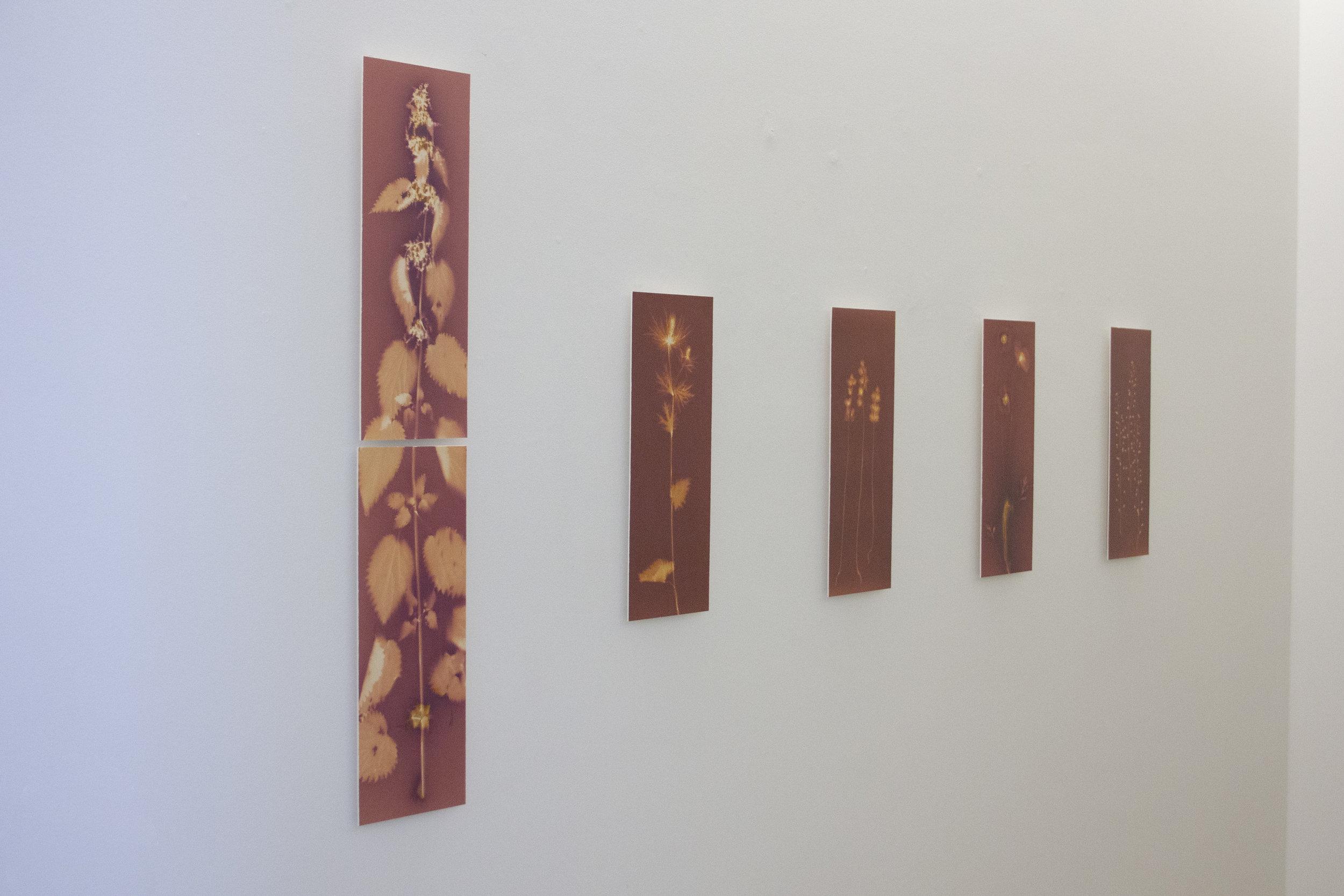 Ausstellungsansichten | Bild: Valentina De Pasquale