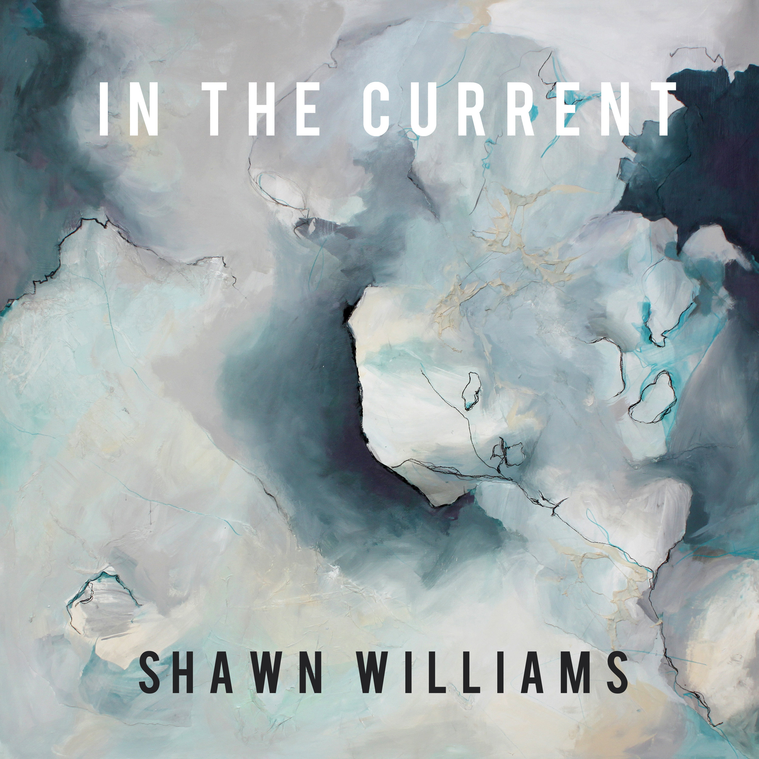 In The Current by Shawn Williams, film composer