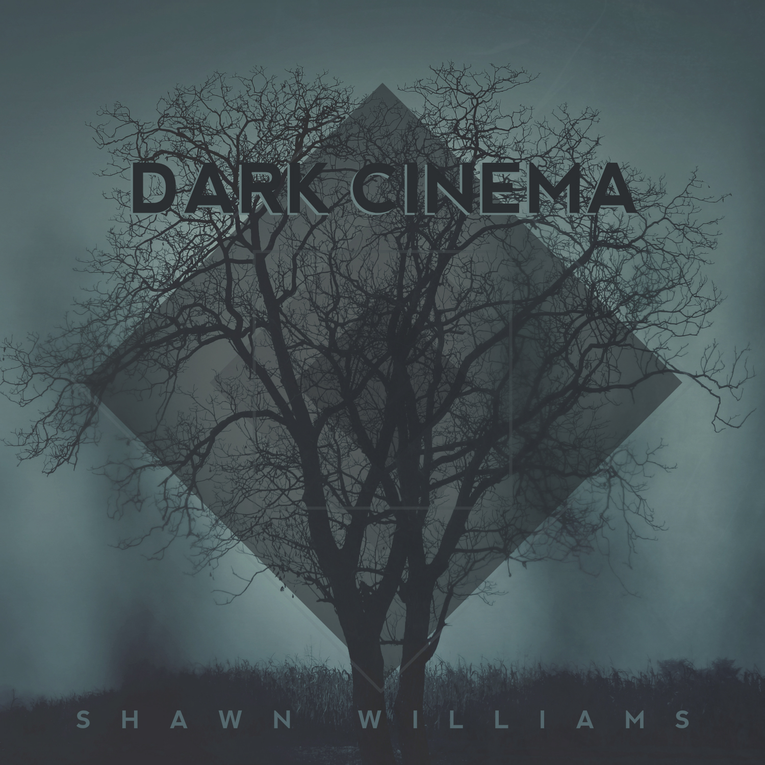 DARK CINEMA