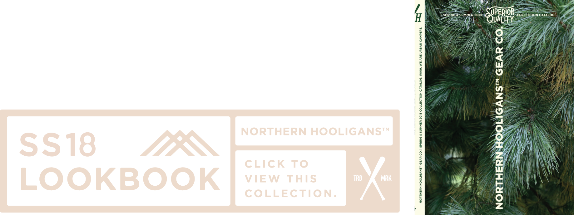 SS18.png