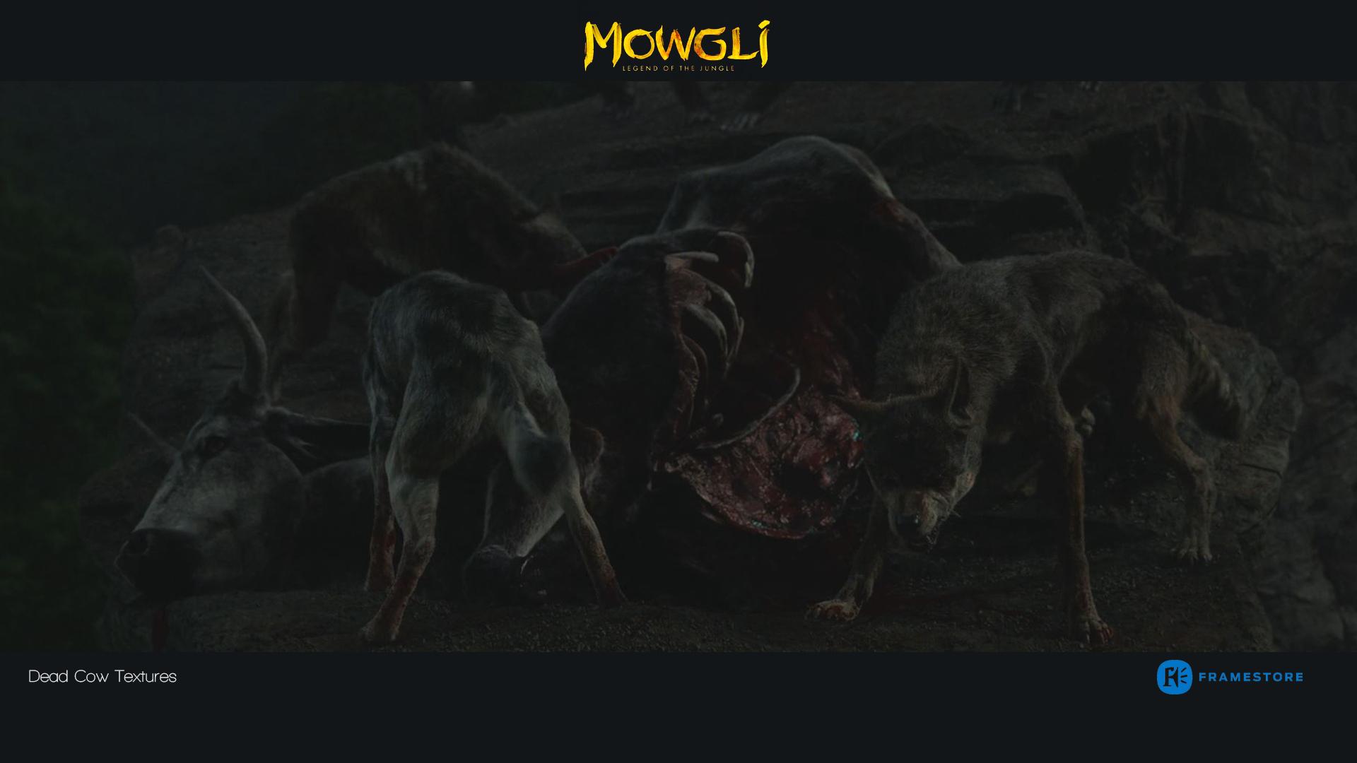 Mowgli6.jpg