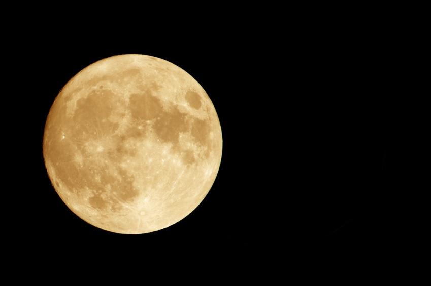 moon activity.jpg