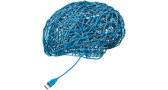 2016-04-25-1461600706-4557919-Brain-thumb.jpg