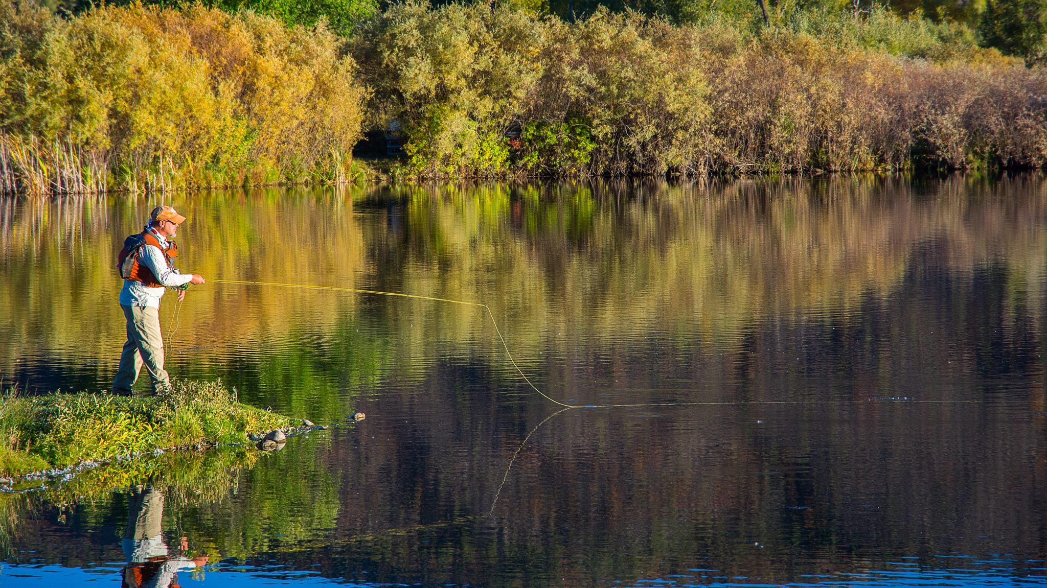 John P. Newbury fishes still water