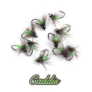 Caddis.jpg