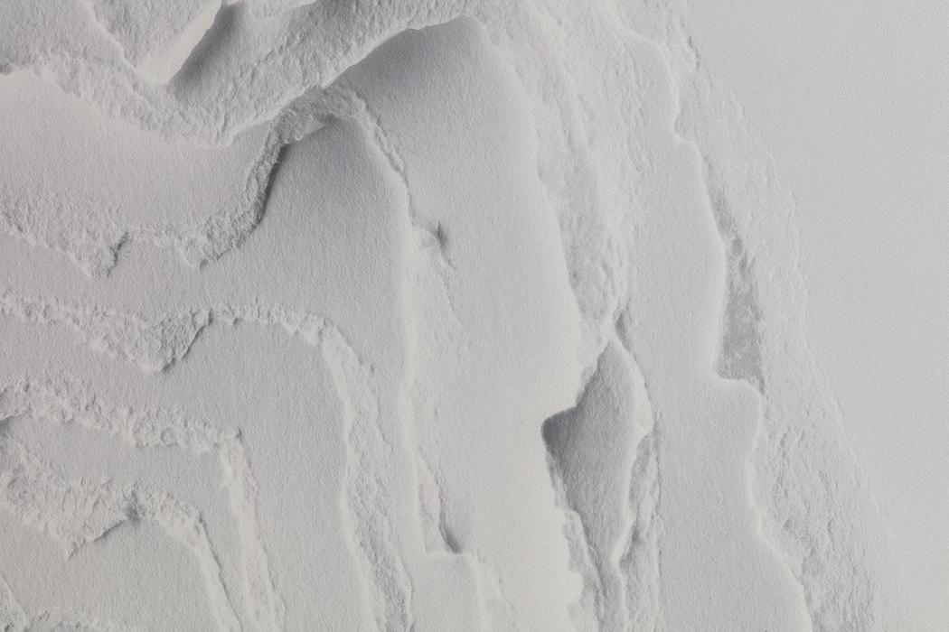 SNARKITECTURE CALICO WALLPAPER 2D LAUREN COLEMAN.jpg