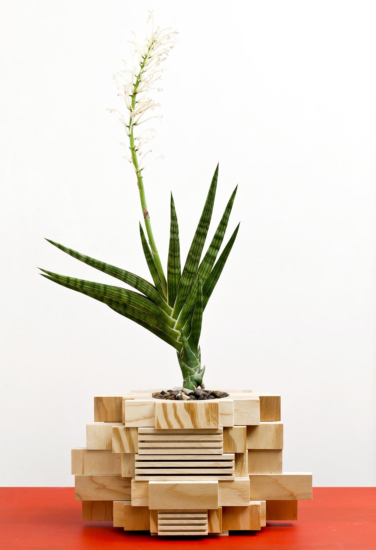 planter 07.jpg
