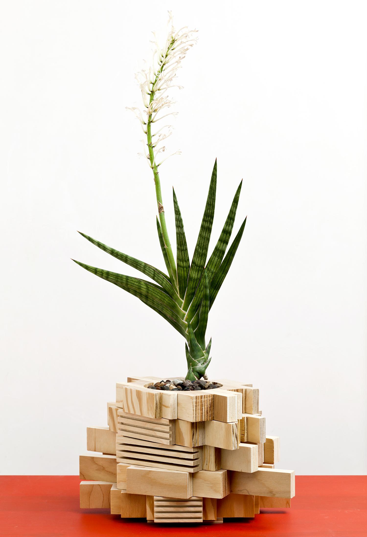 planter 08.jpg
