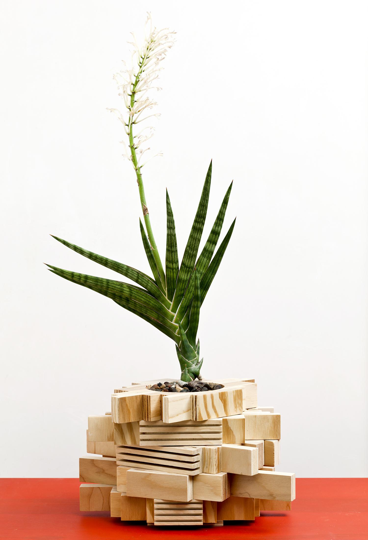planter 09.jpg